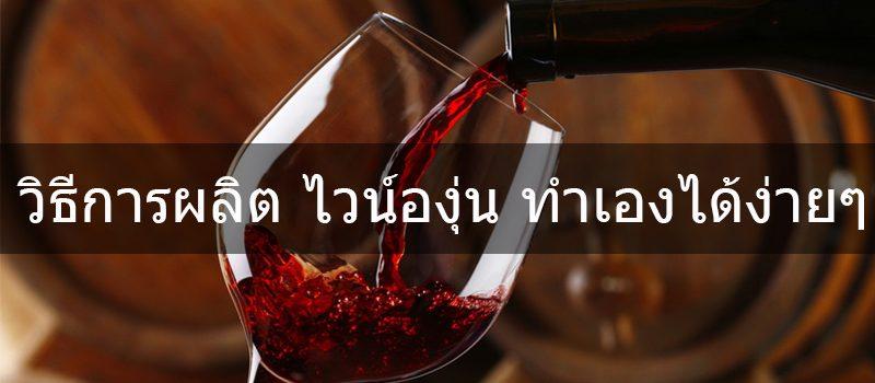 make your own grape wine